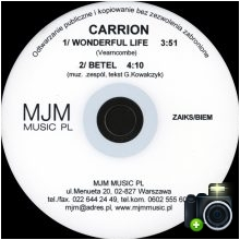Carrion - Wonderful Life
