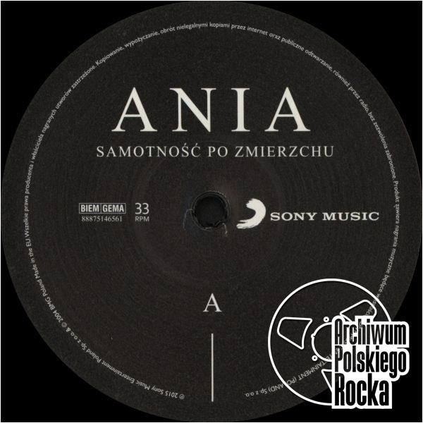 Ania Dąbrowska - Samotność po zmierzchu