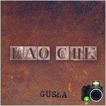 Lao Che - Gusła