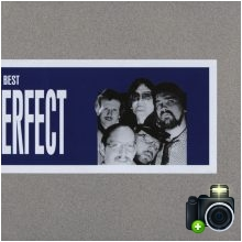 Perfect - The Best