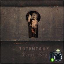 Totentanz - Zimny dom